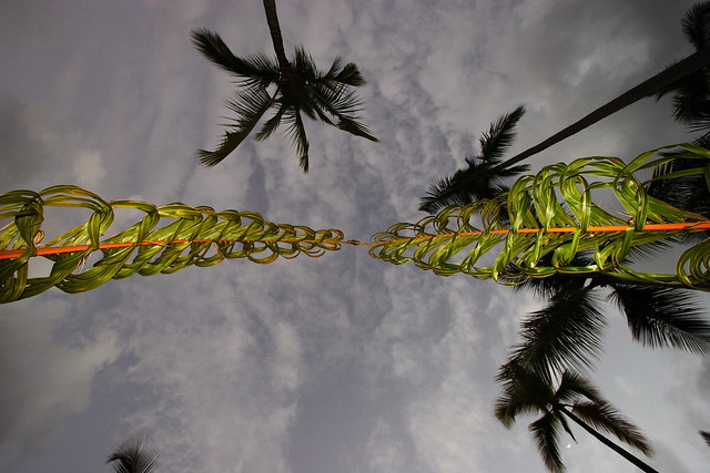 Just a cool shot from under the Wedding Arch made of palm fronds