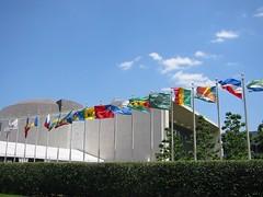 UN member flags