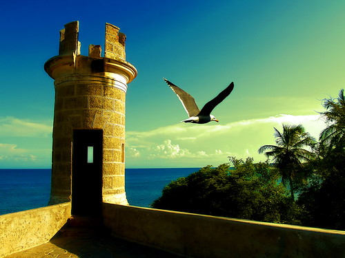 A postcard for the Margarita island by *atrium09
