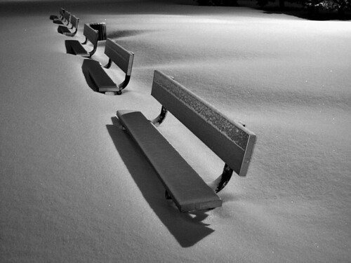 Winter Benches! by judo_dad1953
