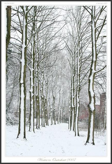 Snow in Oosterhout