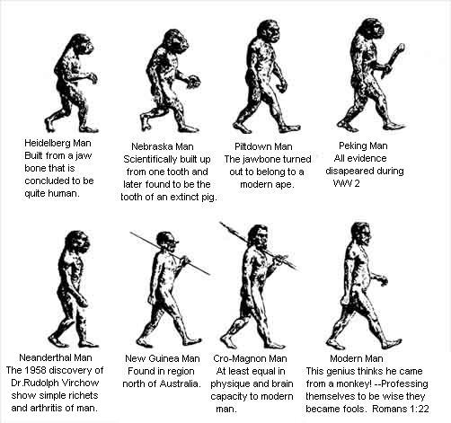 Caveman Vs Modern Man : Caveman is a textbook fiction they have never existed