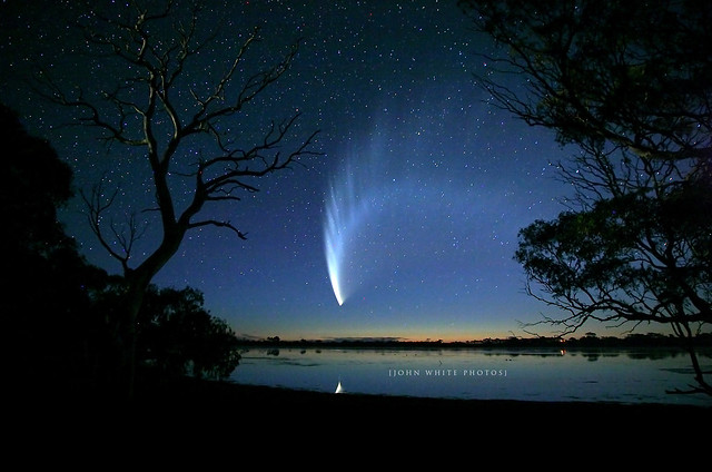 John White - McNaughts Comet Eyre Peninsula South Australia