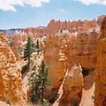 Canyons - Bryce Canyon, Utah