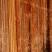 Small photo of Exposed redwood plank