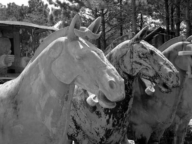 Forbidden Gardens Horses