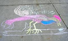 street art(0.0), graffiti(0.0), art(1.0), chalk(1.0), wing(1.0), drawing(1.0),