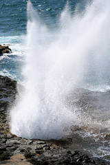 water, sea, ocean, blowhole, body of water, wind wave, wave, shore, coast, rock,