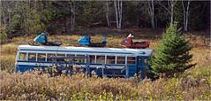 Nova Scotia: Brookville