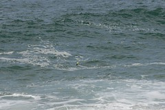 Snorkel breach