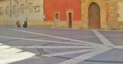 Una paloma y dos mujeres