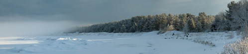 statepark trees winter mist snow ice beach michigan dusting petoskey littletraversebay