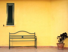 Montevago Yellow