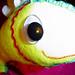 yellow flying fish