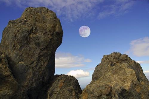 Shine On, Ersatz Moon