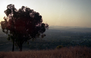 Daybreak, Wodonga, Victoria, Australia 1992