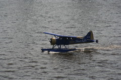 aviation, airplane, wing, vehicle, light aircraft, seaplane,