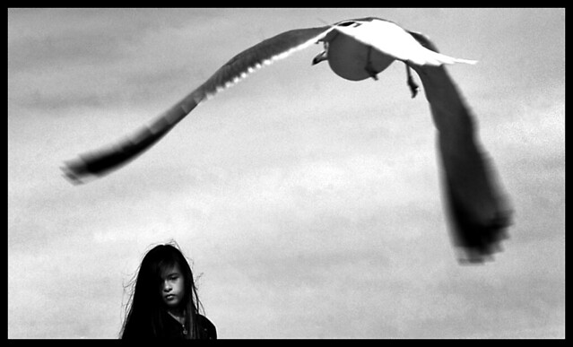 Grow wings and take flight - The Decisive Moment in Street Photography