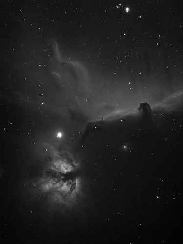 Dark Nebula B33 and NGC 2024 in Cygnus