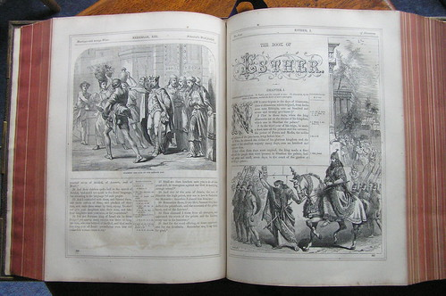 Illustrated Bible 1864