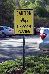 UNICORN PLAYING