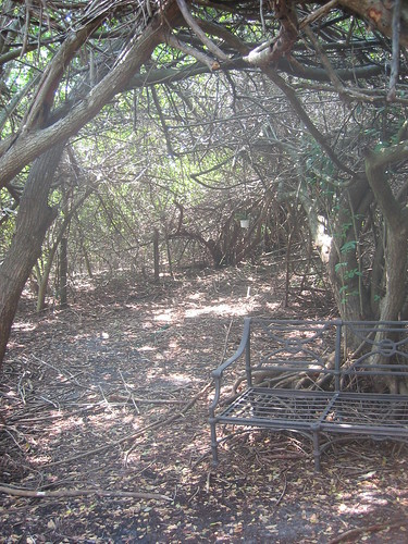 metal forest bench outdoors florida hidden shade canopy