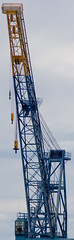vehicle(0.0), mast(0.0), tower(0.0), transporter bridge(0.0), bridge(0.0), construction equipment(1.0), crane(1.0),