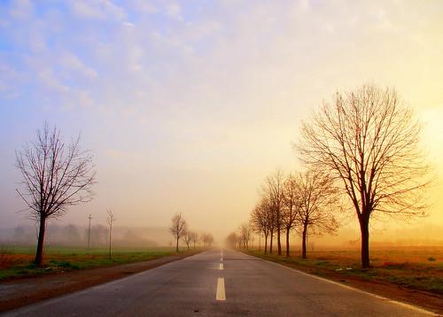 street fog sunrise serbia abigfave obrenovac impressedbeauty