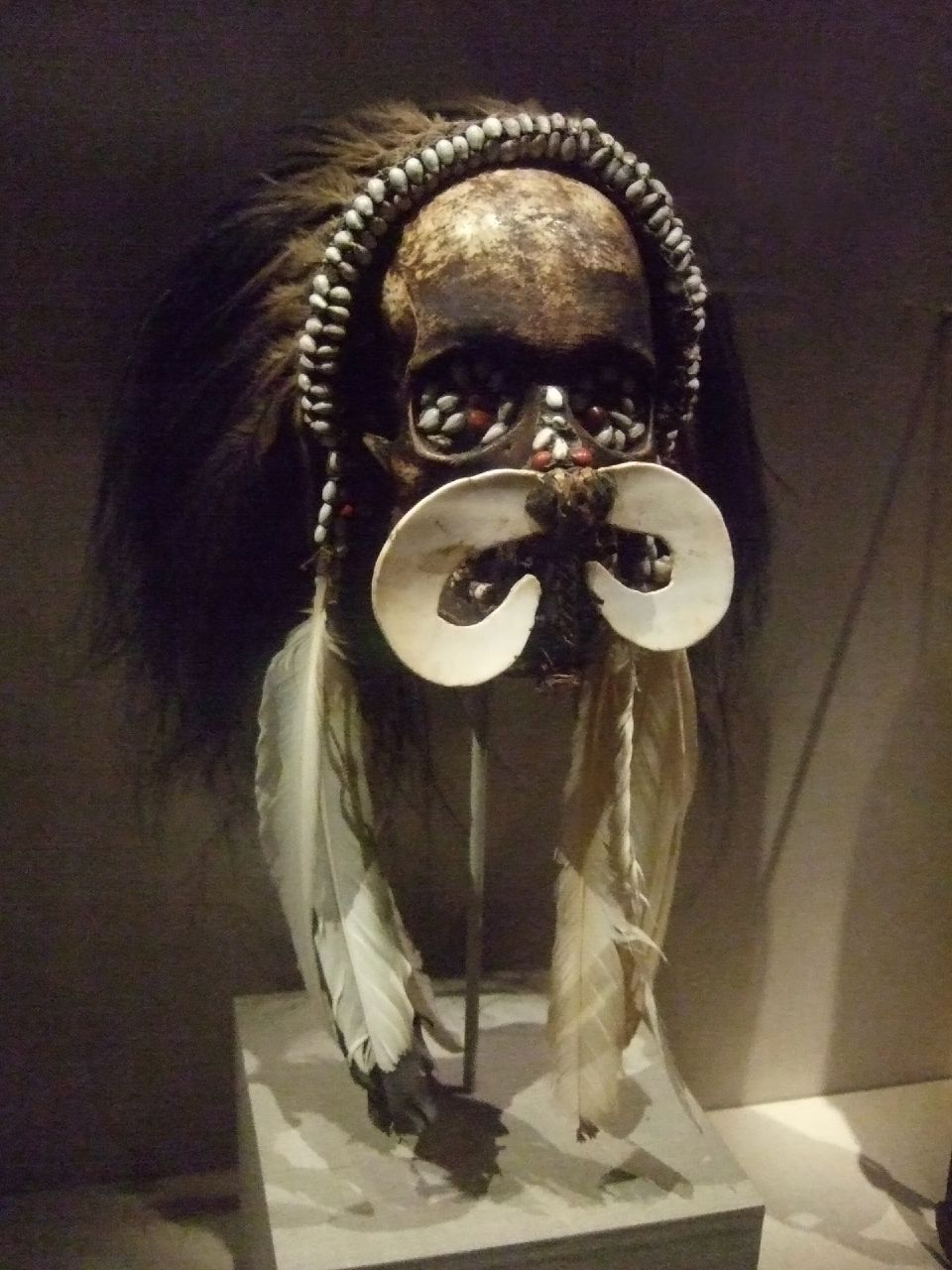 Ancestor Skull Asmat People Southwest coast of West Papua 20th century (1)