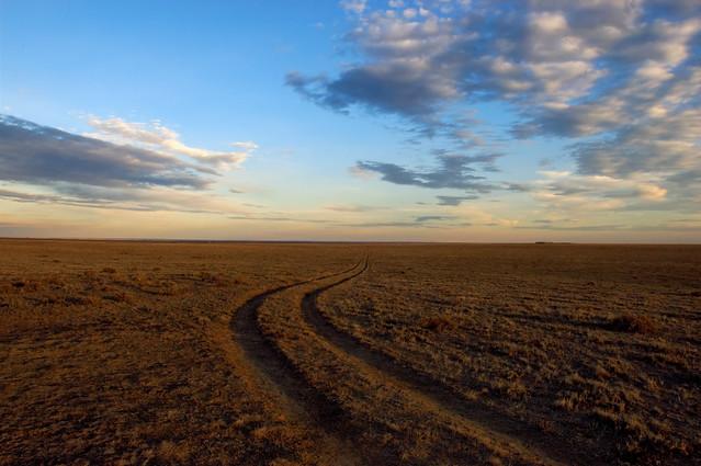 Two Track Prairie Vista