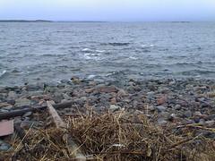 horizon, sea, pollution, ocean, body of water, natural environment, shore, rock,