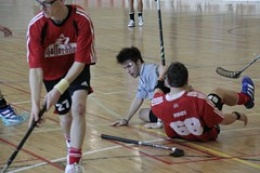 ball hockey(0.0), roller hockey(0.0), roller in-line hockey(0.0), indoor field hockey(0.0), stick and ball games(1.0), floor hockey(1.0), sports(1.0), team sport(1.0), hockey(1.0), floorball(1.0), ball game(1.0),