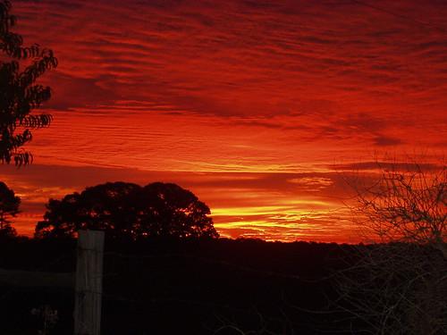 sunrise dacula