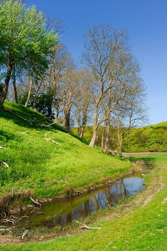 nature landscape denmark danmark fyn funen middelfart