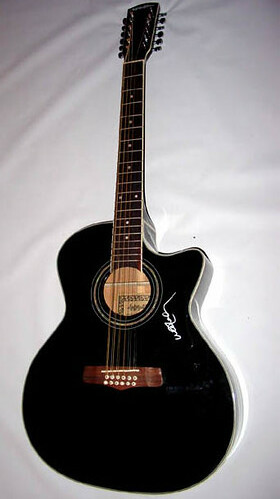 another guitar on e bay autographed by willie nelson. Black Bedroom Furniture Sets. Home Design Ideas