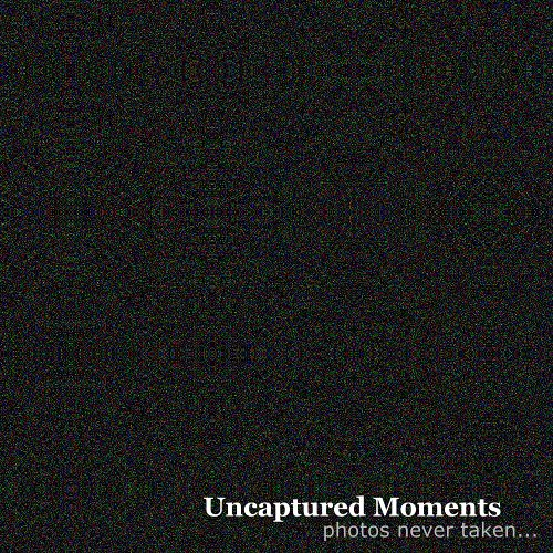 uncaptured moments
