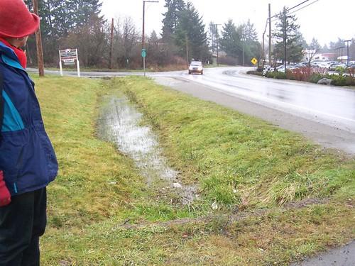 drainage towards Blain Rd
