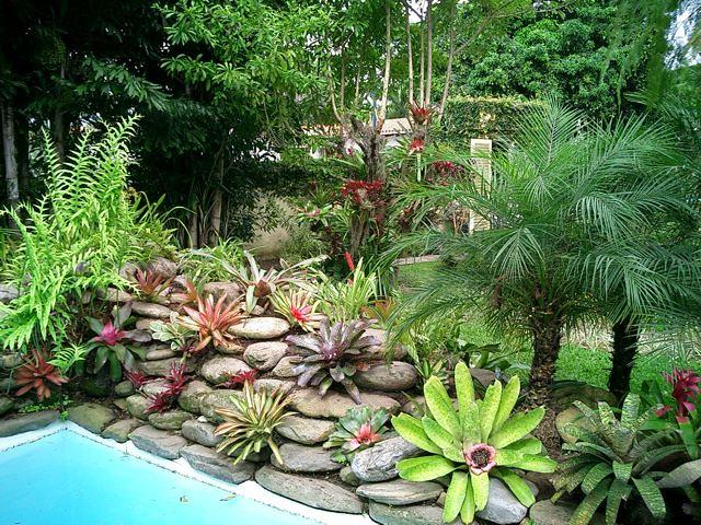 Jardines con bromelias y orquideas 12 flickr photo for Jardines de orquideas