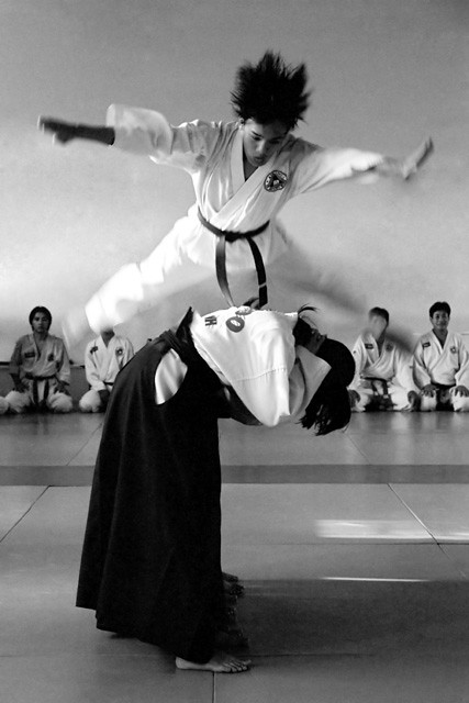 Image Result For Aikido Movies On