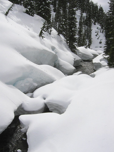 Garibaldi Lake Snowshoe, 21 Apr 2007