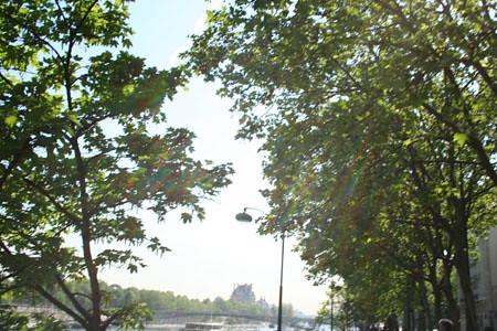 Belle Salope A Gros Seins Sur Lyon