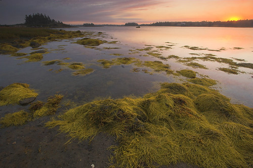 canada landscape novascotia