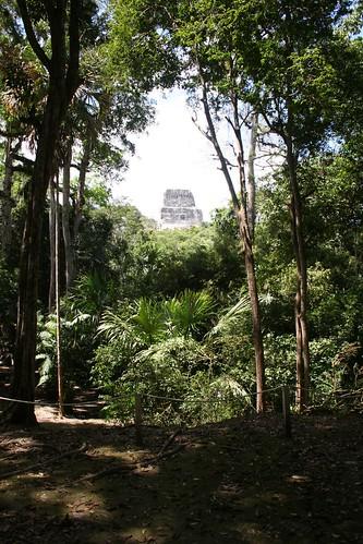 4Neus' photo of Tikal