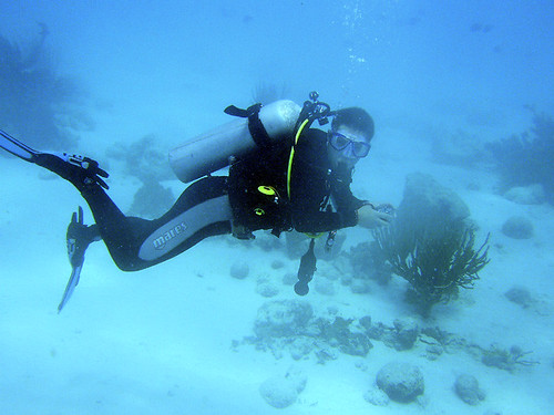 Diver at Bonaire