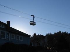 tram + sunset