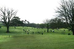 Cottrell Park Golf Club