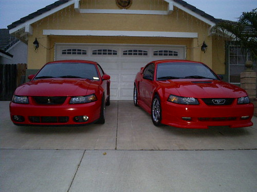 Fast fords mustangs =)