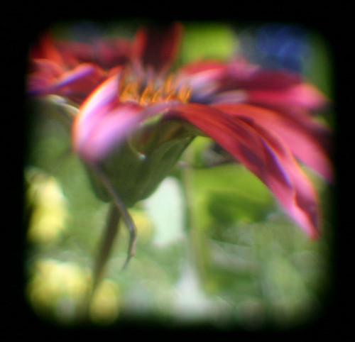Painterly TTV