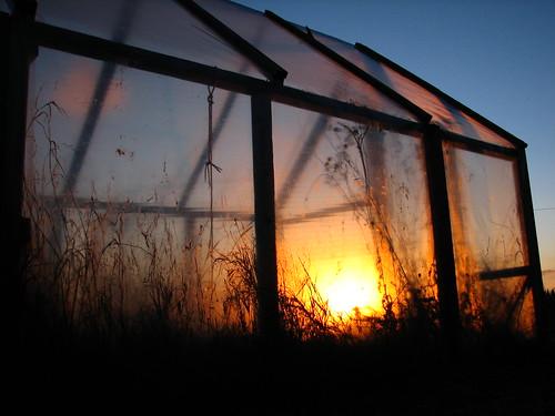 sunset greenhouse penttilänmäki