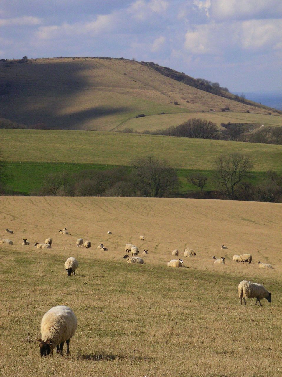 Book 1, Walk 29, Hassocks to Lewes 2 March '06